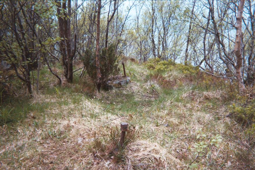 Flak gun remains, Aksla